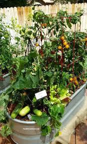 the 25 best metal trough ideas on pinterest raised gardens