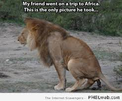 Africa Meme - 26 my friends only picture of africa meme pmslweb