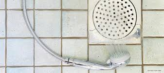 how to unclog a shower drain edmonton u0026 fort saskatchewan