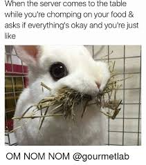 Nom Nom Nom Meme - 25 best memes about nom nom nom nom memes