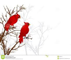 red cardinals sitting in tree stock photos image 6928013