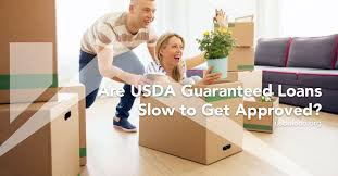 usda customer help desk are usda guaranteed loans slow to get approved usdaloan org