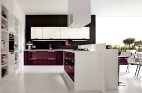 Ultra Modern Kitchen Design Ultra Modern Kitchen Designed With Sleek Doors Cabinets And