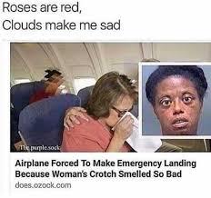 Memes Landing - dopl3r com memes roses are red clouds make me sad tlie purple
