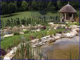 natural backyard swimming pond home design ideas