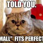 Christmas Cat Memes - christmas cat blank template imgflip