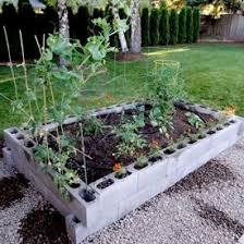 56 best raised garden beds images on pinterest raised gardens