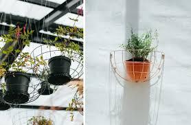 diy blueberry café u0027s hanging planters gardenista