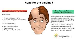 scientists find new hope for balding problems skin u0026 hair