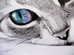 imagenes a lapiz de gatos 10 dibujos a lápiz de gatos dibujos a lapiz