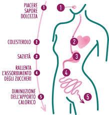 alimenti per combattere la stitichezza propriet罌 crusca nella dieta contro sovrappeso stitichezza