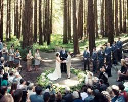 Berkeley Botanical Garden Wedding Uc Botanical Garden Reviews Berkeley Ca 10 Reviews