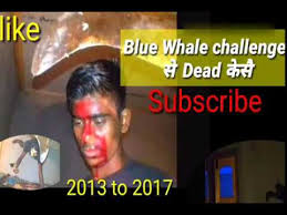 Challenge Victim Blue Whale How To Survive The Blue Whale Victim बल