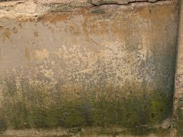 grunge texture peel wall paint