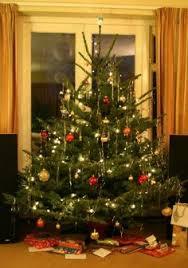 care for a christmas tree christmas trees trees and christmas
