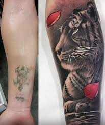 55 cover up tattoos before and after tigers