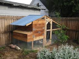 Burke Backyard Chicken Coop In Small Backyard 4 Chicken Coops For Small Spaces