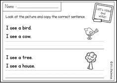 free sentence writing copy the correct sentence these sentence