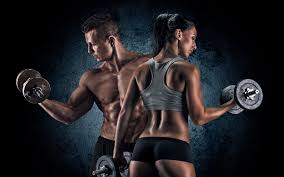 bill goldberg muscular development workout a lot more on hmb part 2 redcon1 online official