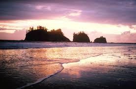 Washington beaches images Hiking washington state 39 s wilderness pacific beaches by u s jpg