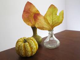 how to preserve pretty fall leaves with wax paper diy network