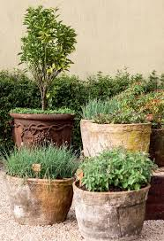 Large Planters Cheap by Top 25 Best Large Terracotta Pots Ideas On Pinterest Formal