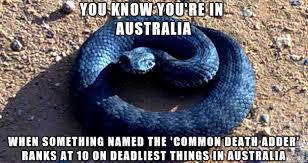 Australia Meme - you know you re in australia when meme on imgur