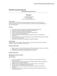 It Consultant Resume Solution Consultant Resume Resume Excellent
