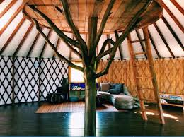 Coolest Airbnb Usa 10 Best Airbnb Treehouses In Hawaii The Travel Women