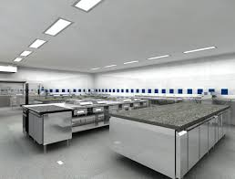 Commercial Kitchen Lighting Requirements 66 Best Beach Dog Boutique Bakery Commercial Baking Kitchen