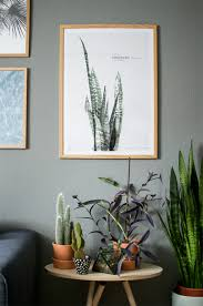 Indoor Home Decor Urban Jungle Bloggers Plants U0026 Art Decoration Plant Art