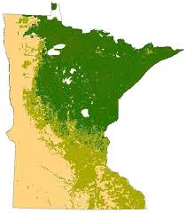 Minnesota vegetaion images Natural history of minnesota wikipedia jpg