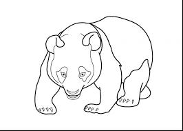 free panda bear coloring pages giant printable free panda bear
