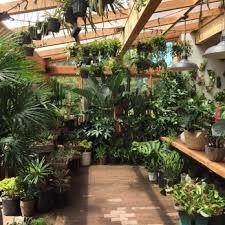 pistils nursery 116 photos u0026 104 reviews nurseries u0026 gardening