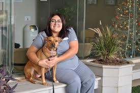 Veterinary Clinic Idaho Veterinary Internal Our Dedicated Support Team Fresno Emergency Veterinary Service