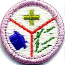 Emergency Preparedness Worksheet Emergency Preparedness Merit Badge Coming Home