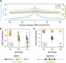 modification si e social association genome wide variation of cytosine modifications between european and