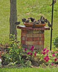 top tip on a pedestal make more of your garden ornaments