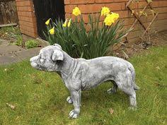 large staffordshire bull terrier ornaments dogs in our