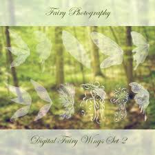 fairy wings photoshop brushes 2 christy peterson