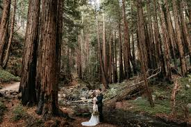 intimate wedding in big sur paige nelson