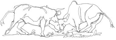 now or never bull fight continuous line drawing