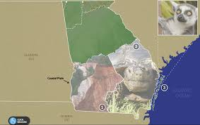 Georgia And Florida Map by The Regions Of Georgia Virtual Field Trip Is Here Georgia Public
