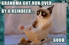 Christmas Grumpy Cat Meme - have a grumpy christmas