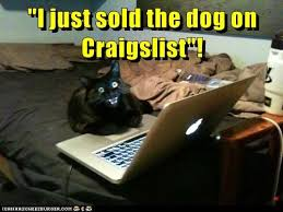Cat Laptop Meme - lolcats laptop lol at funny cat memes funny cat pictures with