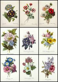 best 25 vintage flower tattoo ideas on pinterest vintage floral