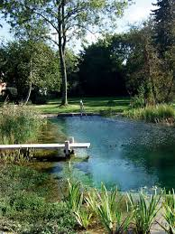 Natural Swimming Pool What You Need To Know About Natural Swimming Pools Dig This Design