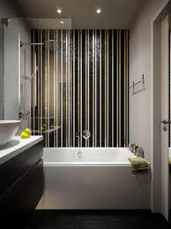 Small Apartment Bathroom Ideas Endearing Small Apartment Bathroom Ideas With Tub 8 Shower Screen