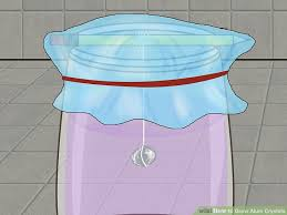 where can i find alum 3 ways to grow alum crystals wikihow