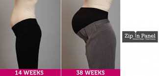 maternity work clothes maternity work wear business clothes and career apparelsuits your